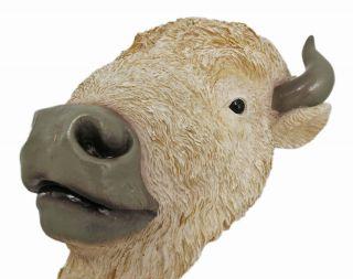 White Buffalo Head Mount Wall Statue 9 Inch Bison