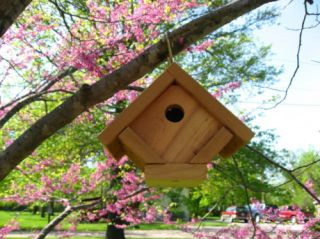 New All Cedar Wren Houses Bird House Nest Birdhouse