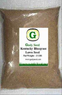 Kentucky Bluegrass Grass Seed   Beautiful Lawn 6 lbs  Direct from