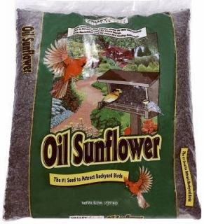 Commodities Inc 5 lb Black Oil Sunflower Bird Seed Bag 00388