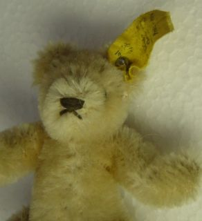 Lovely Vintage Miniature Steiff Mohair Original Teddy Bear with Button