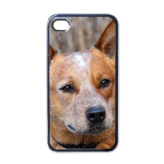 Cattle Blue Red Heeler Dog Puppy Puppies 3 Apple iPhone 4 Case Cover