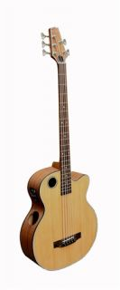 Boulder Creek EBR3 N5F Acoustic/Electric Fretless 5 String Bass