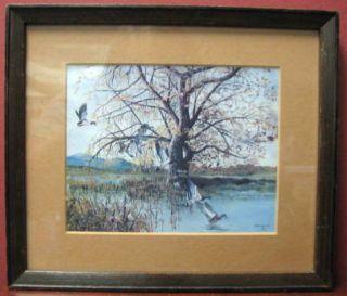 Eigh Mallard Ducks by Bruce Johnson Framed Mini Prin