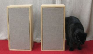 Acoustic Research AR 4 AR4 Blonde Plywood Utility Cases Excellent