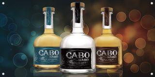 Cabo Wabo Tequila Reposado Blanco Anejo Bottle Vinyl Banner Sign