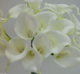 Flowers Cream Ivory Bouquets Calla Lily Wedding Bouquet 18 Head