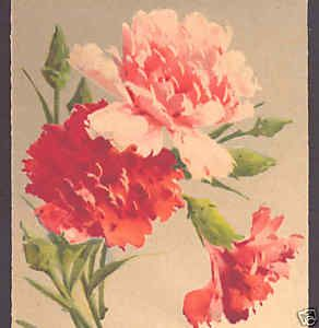 Klein Birthday Peach Pink Carnation Flower Old Postcard