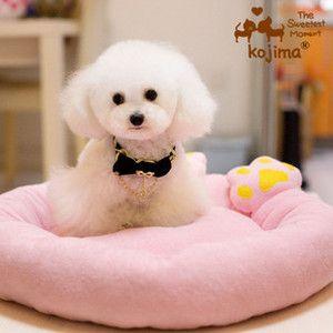 Pet Product Supplies Pet Dog Cat Bed Sofa House Cushion Mat Warm Soft