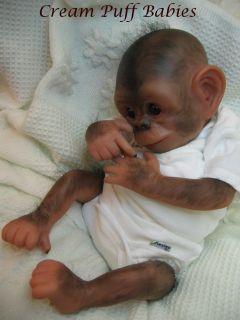 Reborn Baby Chimp Gorilla Monkey Doll Chaz Denise Pratt