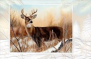 16 Boxed Embossed Christmas Cards Whitetail Deer Buck Hunting