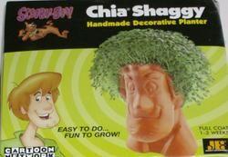 Scooby Doo Shaggy Chia Pet Planter Grow Plant