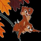 Please check out my other DISNEY CHIP & DALE PINS for sale HERE !