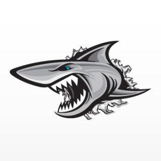 Decal Sticker Shark Attacker Smash Damage Boat Jet Ski Hole Surf