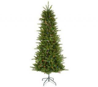 Knox Slim Pine Instant Shape LED Tree by Vickerman —