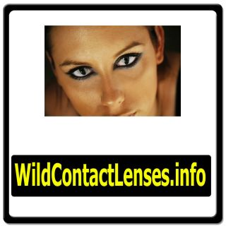 Wild Contact Lenses info EYES CONTACTS LENS COLORED COLOR HALLOWEEN