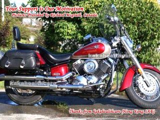 Engine Guards Crash Bar VStar V Star 1100 XV11 Custom