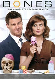 Bones The Complete Seventh Season DVD 2012 4 Disc Set