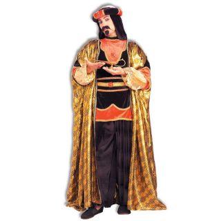 Arabian Aladdin Wise Adult Mens Fancy Dress Halloween Costume