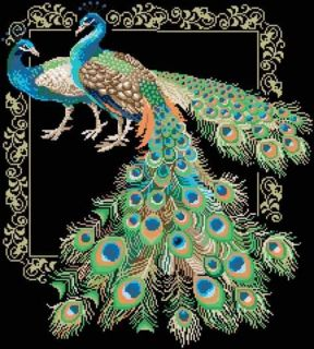 Cross Stitch Kits Beautiful Peacock