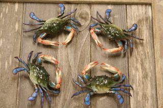 BLUE CRABS, SEAFOOD,RESTAURANT DECOR,GOURMET GIFT
