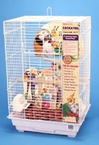 Penn Plax Square Cockatiel Medium Bird Cage Kit White BCK4