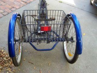 Tona Sheng Industrial 3 Wheel Adult Trike Bicycle Pedal N Moterized