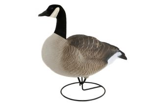 Dakota Canada GOOSE Decoys New 4 Pack of Canada Geese