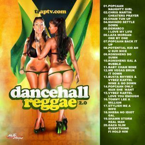 Dancehall Reggae 2 0 2K12 Various Artist Mixtape CD