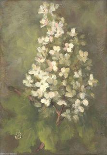 Sepos Daily Painting A Day Still Life Oakleaf Hydrangea Ornamental