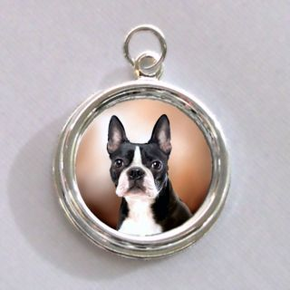 Boston Terrier Ears Up Dog Silver Charm Pendant