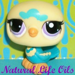 Littlest Pet Shop 2403 Cute Blue Yellow Dove Pigeon Bird A182 RARE LPS