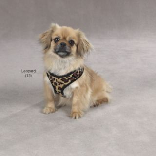 Animal Print Dog Harness Vest Small Dogs Safety Harnesses