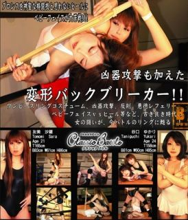 New 43 MIN Japanese Female Women Wrestling DVD Ring Pro Ladies