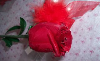 RED FEATHER LONG STEM ROSES 1 DOZEN BOXED INDIVIDUALLY WITH RED