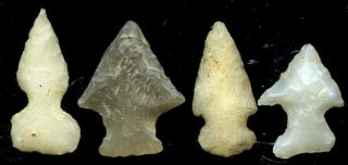 Artifacts Arrowheads Four Nice Oklahoma Lake Eufaula Birdpoints