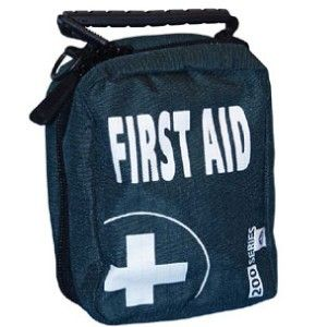 EMPTY FIRST AID KIT BAG WITH COMPARTMENTS  MEDIUM   BLUE