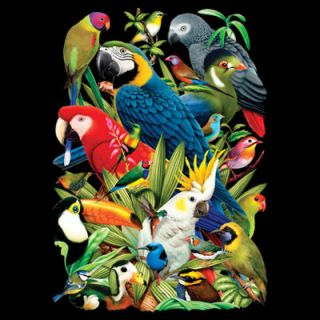 210C Avian Bird Parrot Heat Transfer T Shirt Fabric Sweatshirt Iron on