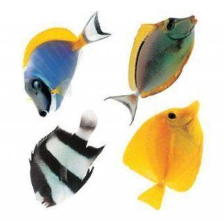 New Cartoon Tatouage Fish Bath Cookroom DIY Wall Decor Sticker