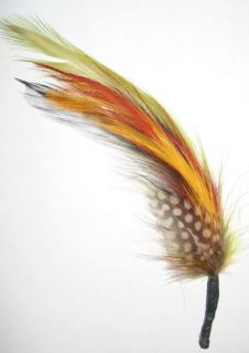 Multi Color   Hat Band Feather Hatband Feathers   Classic Fedora Trim