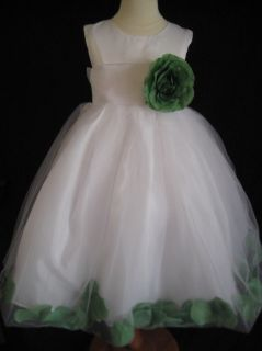 Clover Green Rose Petal Flower Girl Dress 6 9 12 18 MO 2T 3T 4T 5 6 7