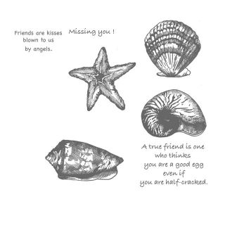 Sea Shells 7 EZ Mounted Rubber Stamps