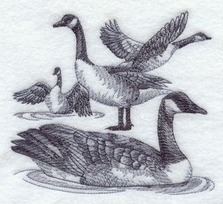 flour sack embroidered kitchen towels / bar mops Canada canadian Goose