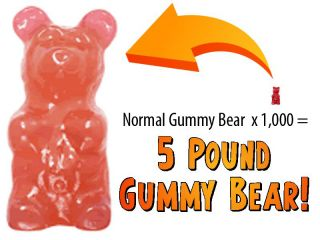 New Worlds Largest Giant Gummy Bear Fruity Bubble Gum 5 Pound Pink