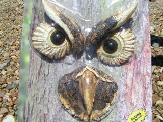 Eyes Glow in The Dark Tree Owl Garden Face