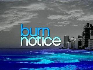 Burn Notice 2nd Second TV Season 2 New DVD 3 Discs 024543589334