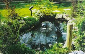 Water Garden Foutain Pond Kit Liner Light Pump 6x9 Koi Pond 1500 GPH