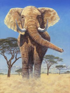 African Elephant Art Canvas Giclee Print by Gary Johnson s N