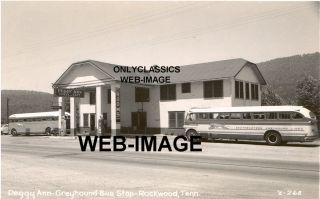 Greyhound Bus Texaco Gas Station Cafe TN Photo Roadside