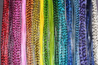 Grizzly Feather Extension Kit U Choose Colors Beads Divne Feathers